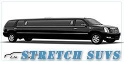 Wedding limousine in Buffalo, NY
